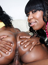 Porn Pros Network pic 11